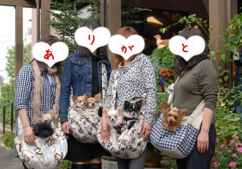 LIMUくん&CHACHAくん・こなつちゃん&ひなたくん・あみぃちゃん&RIOくん・アスパシアちゃん